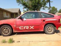 CRX small pic.jpg